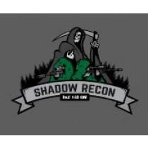 1-33 Cav Shadow Recon Decal